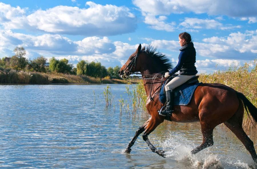 Trekking a cavallo: per rilassarsi e tonificare gambe e glutei