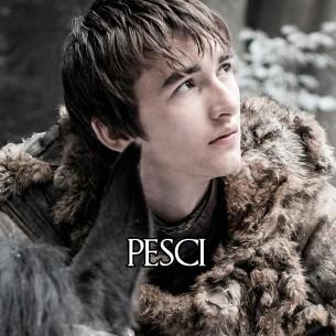 Pesci: Bran Stark