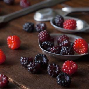 Frutti di bosco: lo spezzafame che rafforza le difese e contrasta le rughe