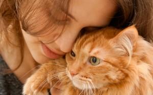 Gattoterapia: perché vivere con un gatto fa bene