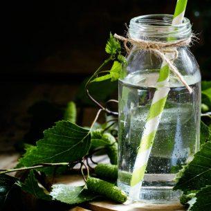 Plant waters: la nuova moda dei drink a base di linfa