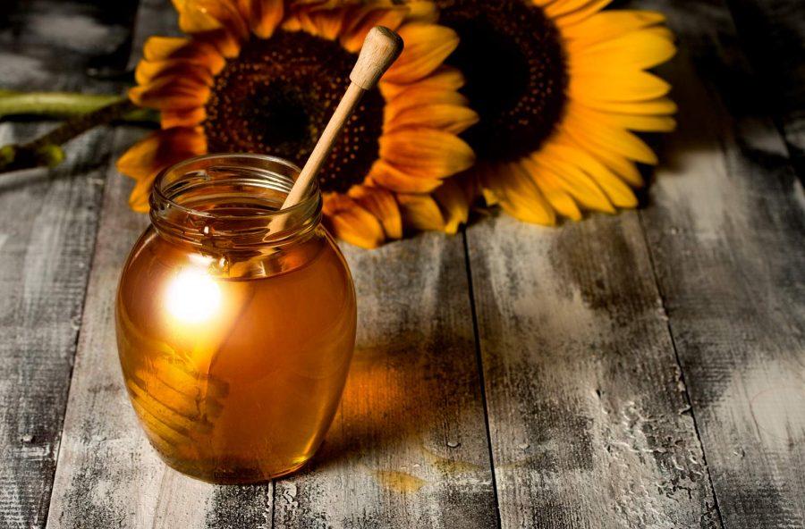 Miele di girasole per tenere il colesterolo sotto controllo