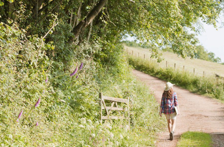 Camminare nel verde apre la mente