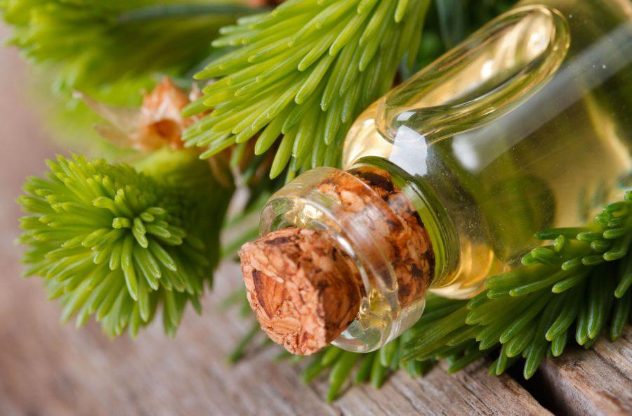 Concentrazione: aumentala con l'olio essenziale di abete
