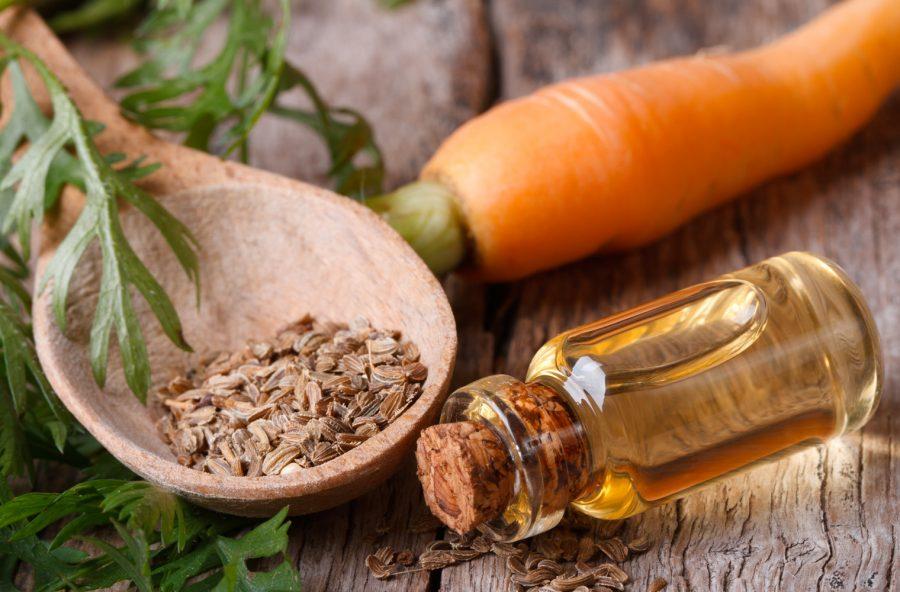 Olio di carota per proteggere e rigenerare pelle e capelli
