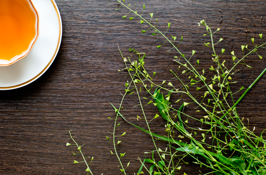 Dolori mestruali: dimenticali con una tisana