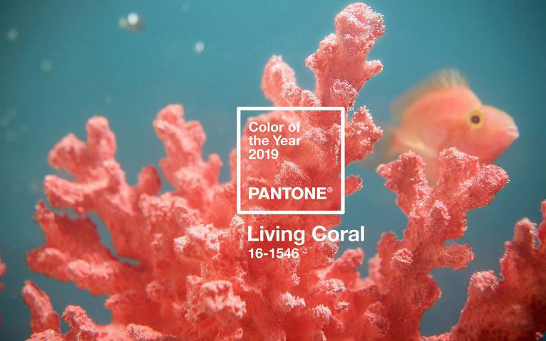 Colore Pantone 2019, anche il make up è Living Color