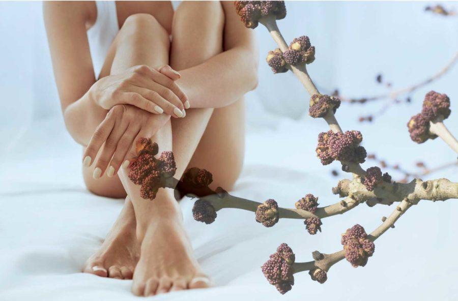 Cellulite: gambe più snelle e leggere con il gemmoderivato di frassino