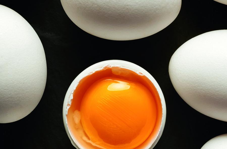 Alzheimer: si combatte con il rosso dell'uovo