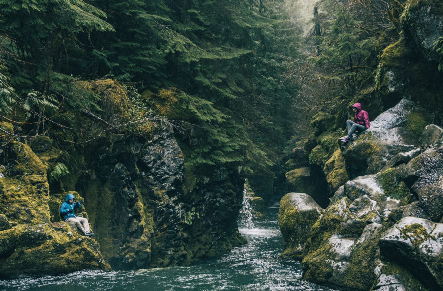 Shinrin-Yoku: nella natura selvaggia per ascoltare (e ritrovare) se stessi