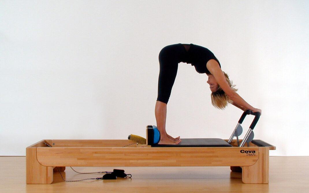 pilates-reformer-elephant