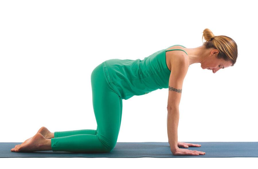 Yoga: fai il Gatto per combattere il mal di schiena