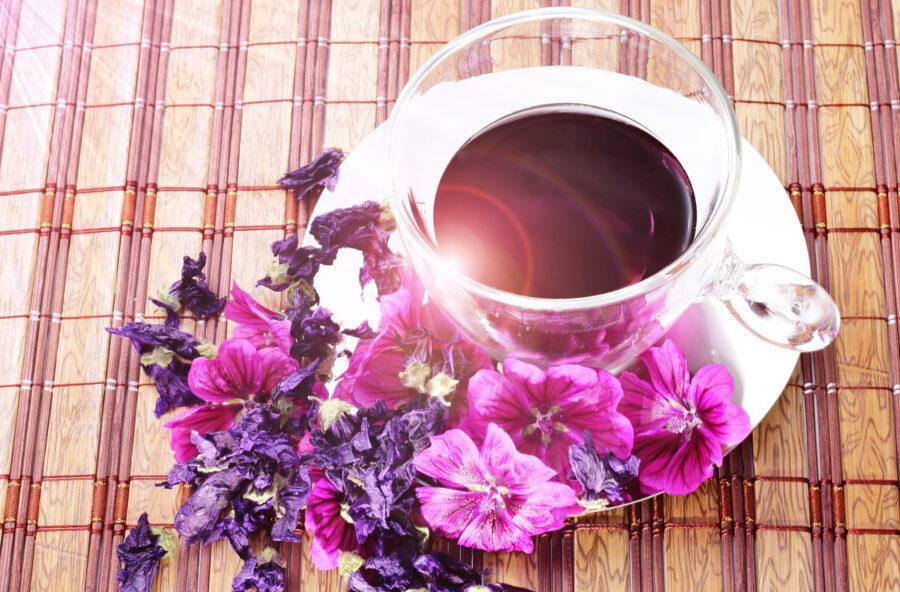 Malva rosa: prova l'infuso che calma l'intestino