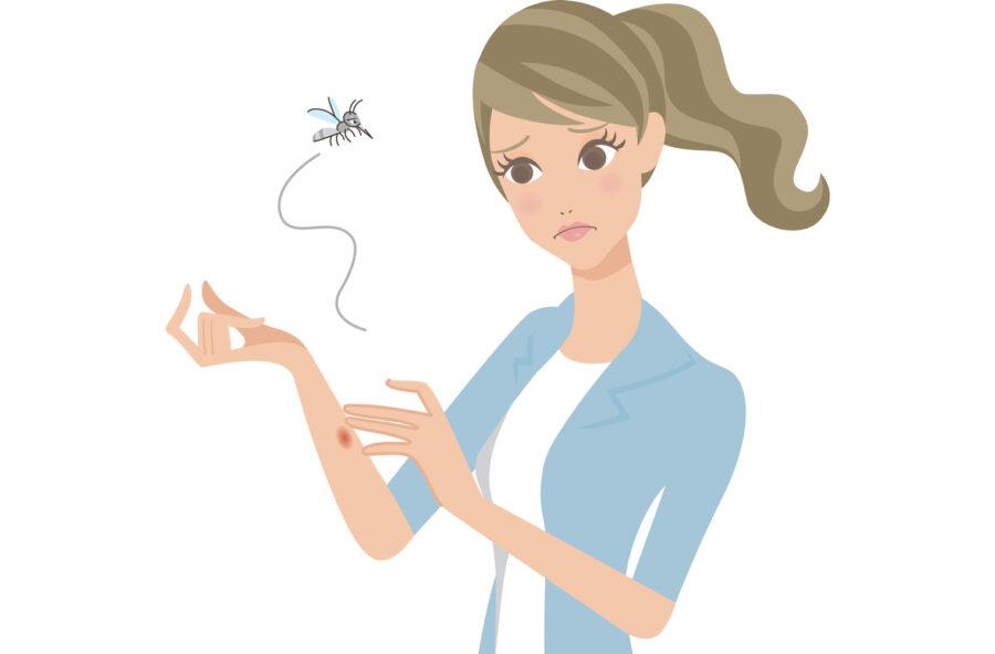Zanzare: contro le punture la soluzione è naturale, profumata ed efficace