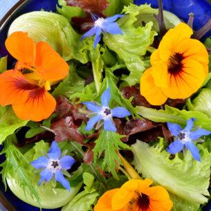 Ricette con il fiori, il sapore e l'energia della primavera