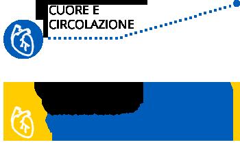 Cuore e circolazione
